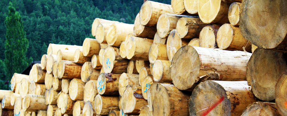 60-per-cento-in-meno-di-legno